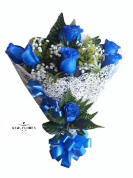 1422 7 azul