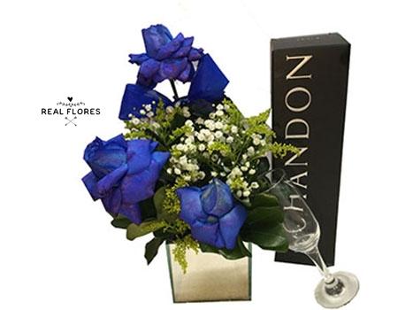 1472 Romance  Premium blue
