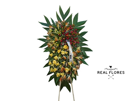 1521 Coroa Luxuosa